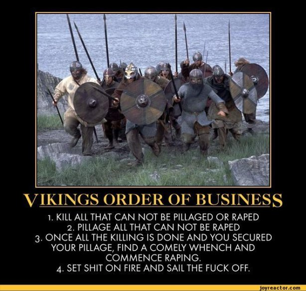funny-pictures-auto-demotivation-viking-475942